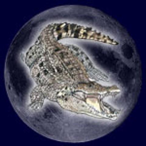 23 лунный день. Белла Авеб.