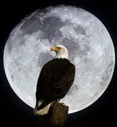 20 лунный день. Белла Авеб.