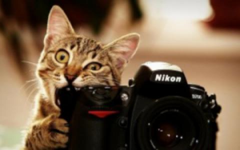 Как защитить от сглаза свою фотографию из соц.сетей? Белла Авеб.